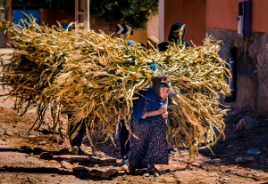 Woman Carrying Hay